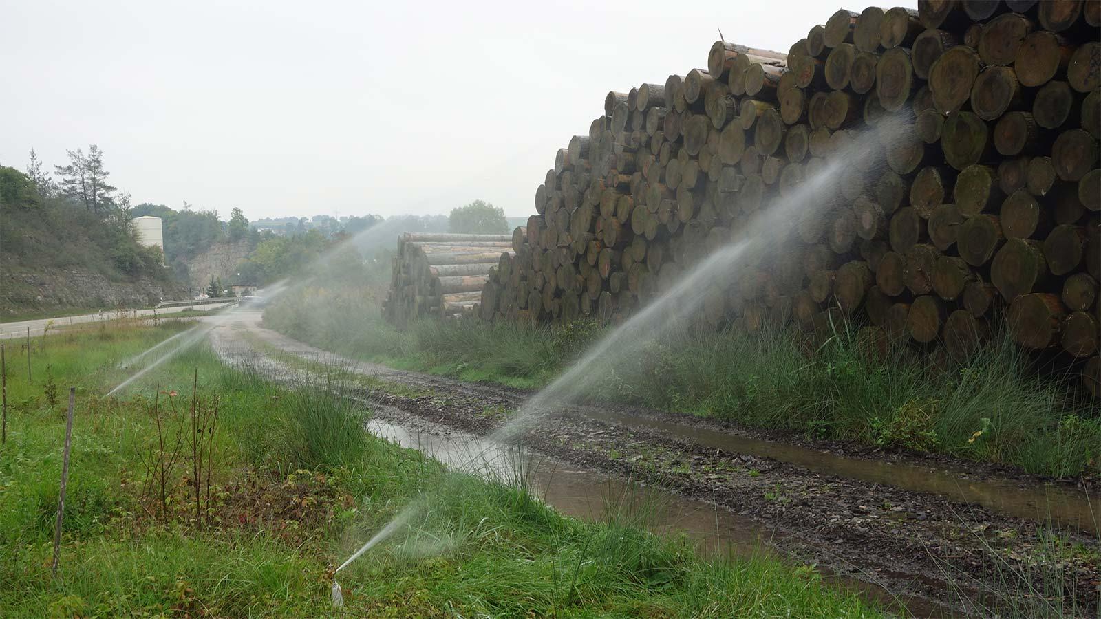 Baumstämme Bewässerungsanlage