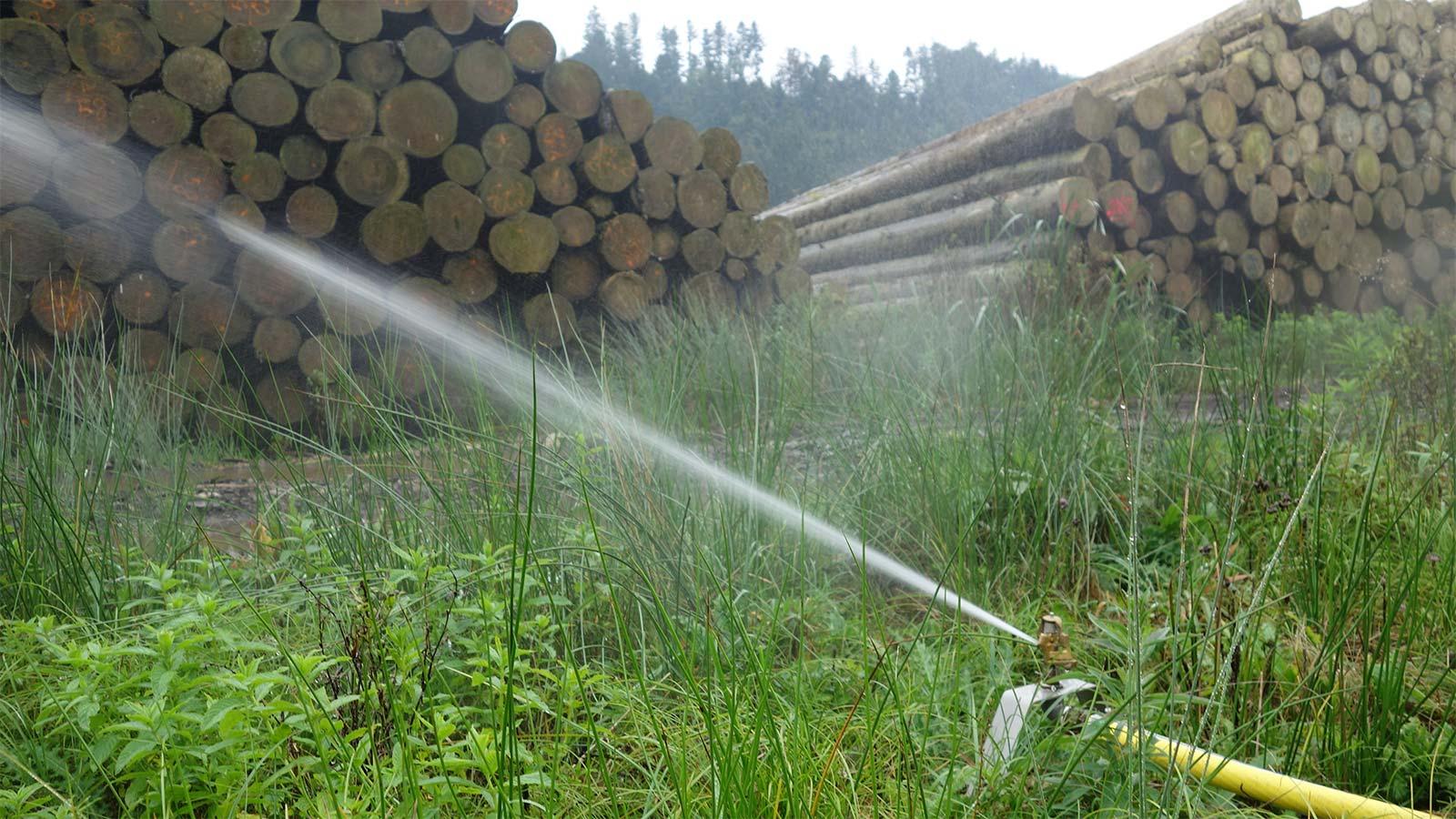 Holz wässern